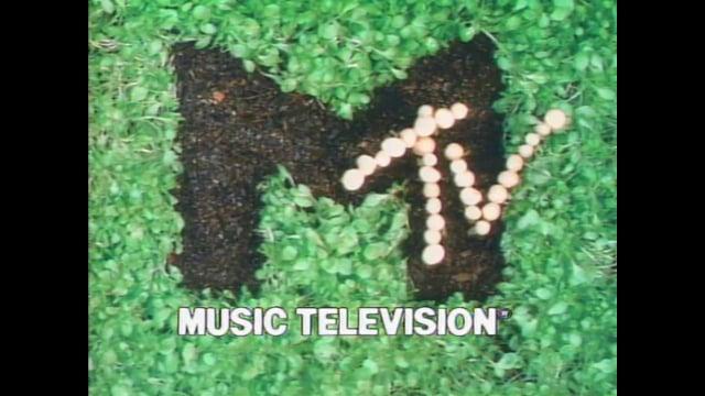 MTV Mollusk