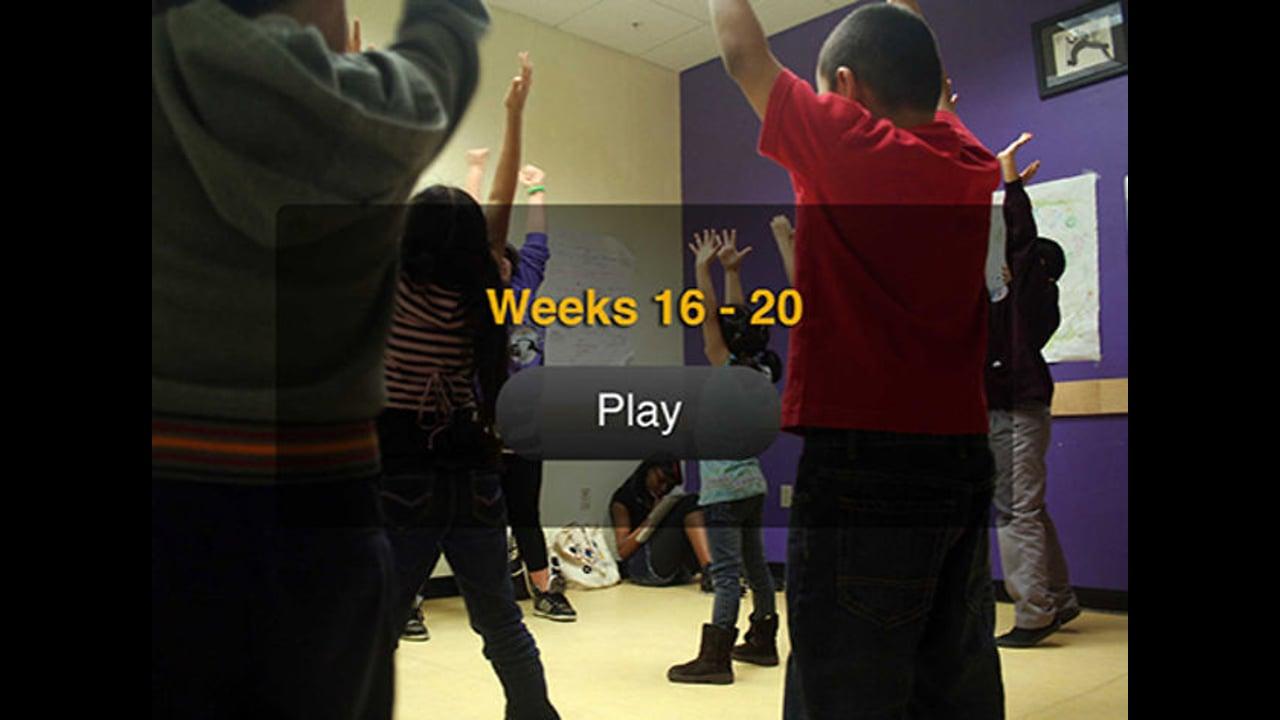VC2 Weeks 16-20