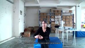 Anne Lacaton Interview