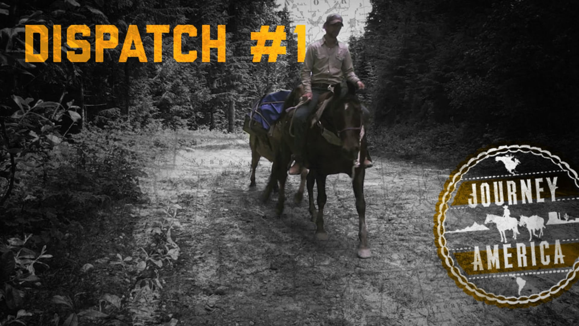 Dispatch #1 - Horse-shoeing