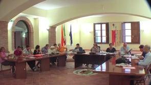 Consiglio 30-07-2012