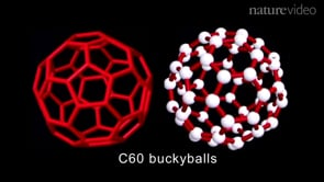 Nanotechnology: use and misuse, with Harry Kroto