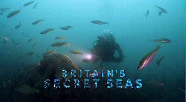 Britain's Secret Seas