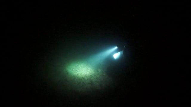 4xpg in the night