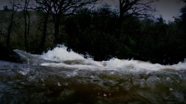 11 Under Water