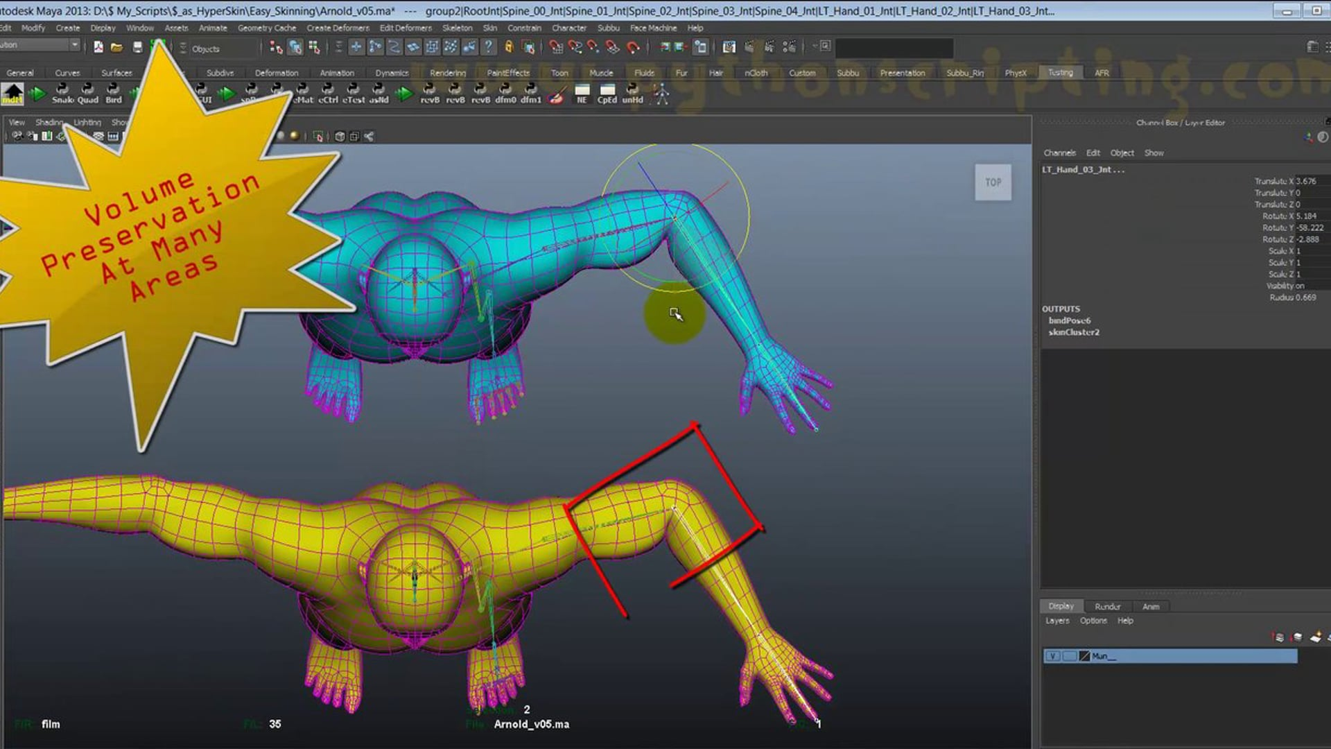 as_HyperSkin : Auto Skinning - State Of The Art Skinning Tool For Maya