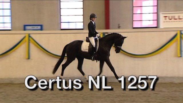 Certus NL 1257