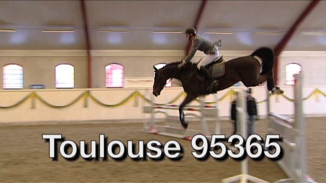 Toulouse 95365