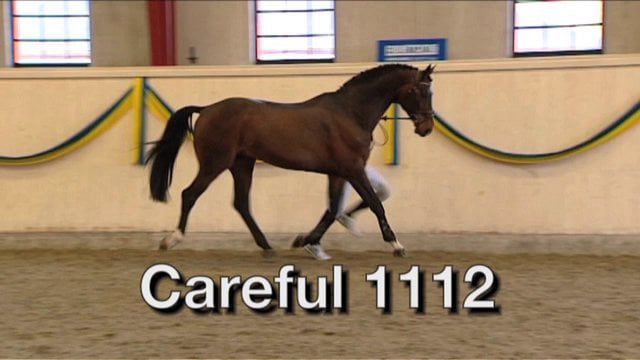 Careful 1112