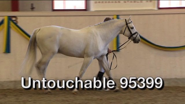 Untouchable 95399