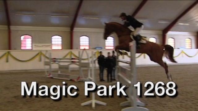Magic Park 1268