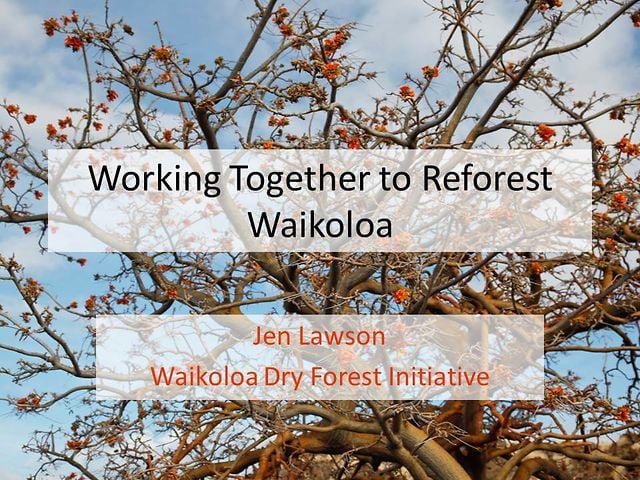 """2013_10.  Jen Lawson  """"Working Together to Reforest Waikoloa"""""""