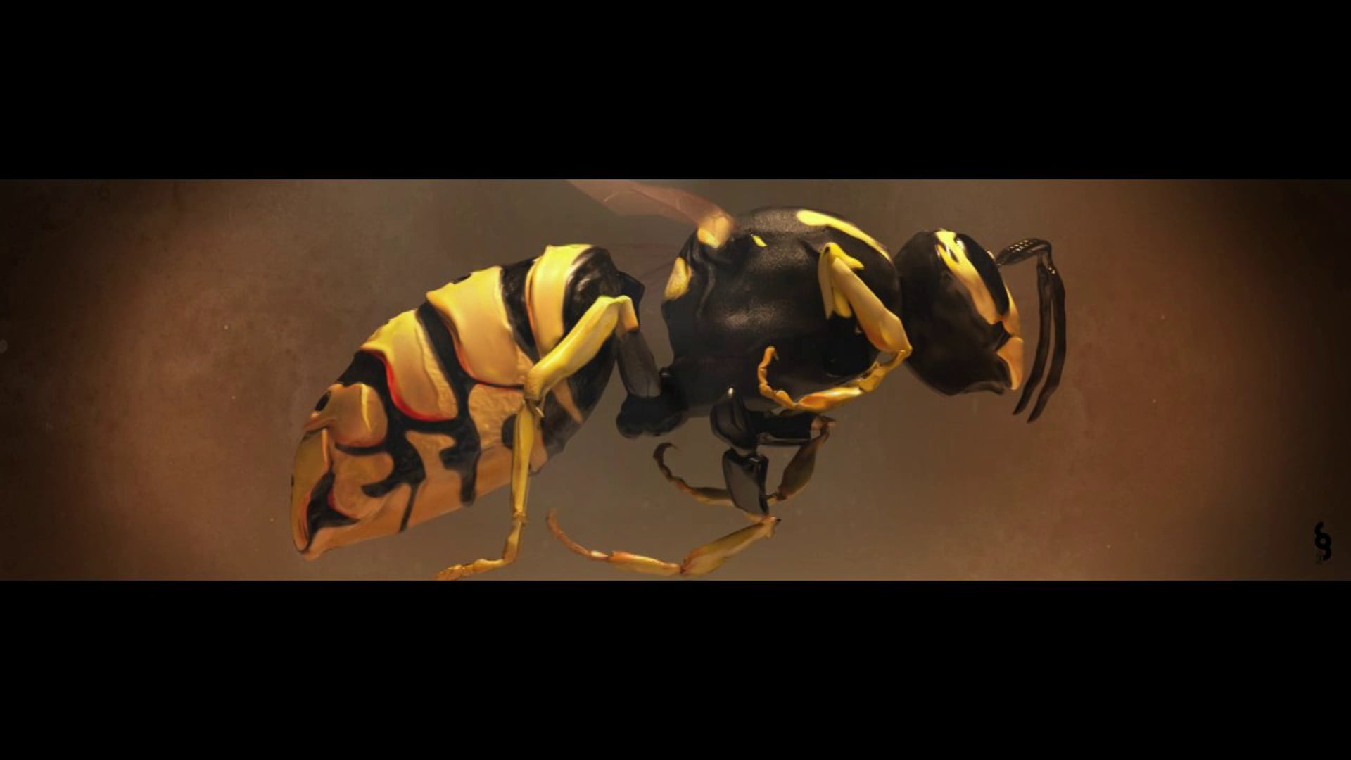 Wasp Takes Flight