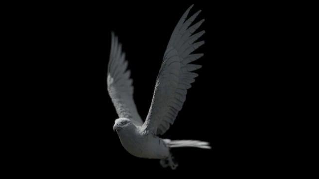 Feather R&D | VFX