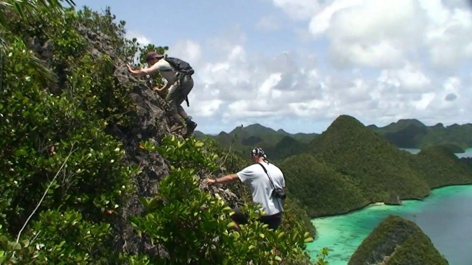 Wayag - View from Mount Pindito