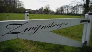 Kantoor Zwijnsbergen