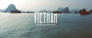 Vietnam 's Expressions