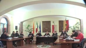 Consiglio 15-01-2013