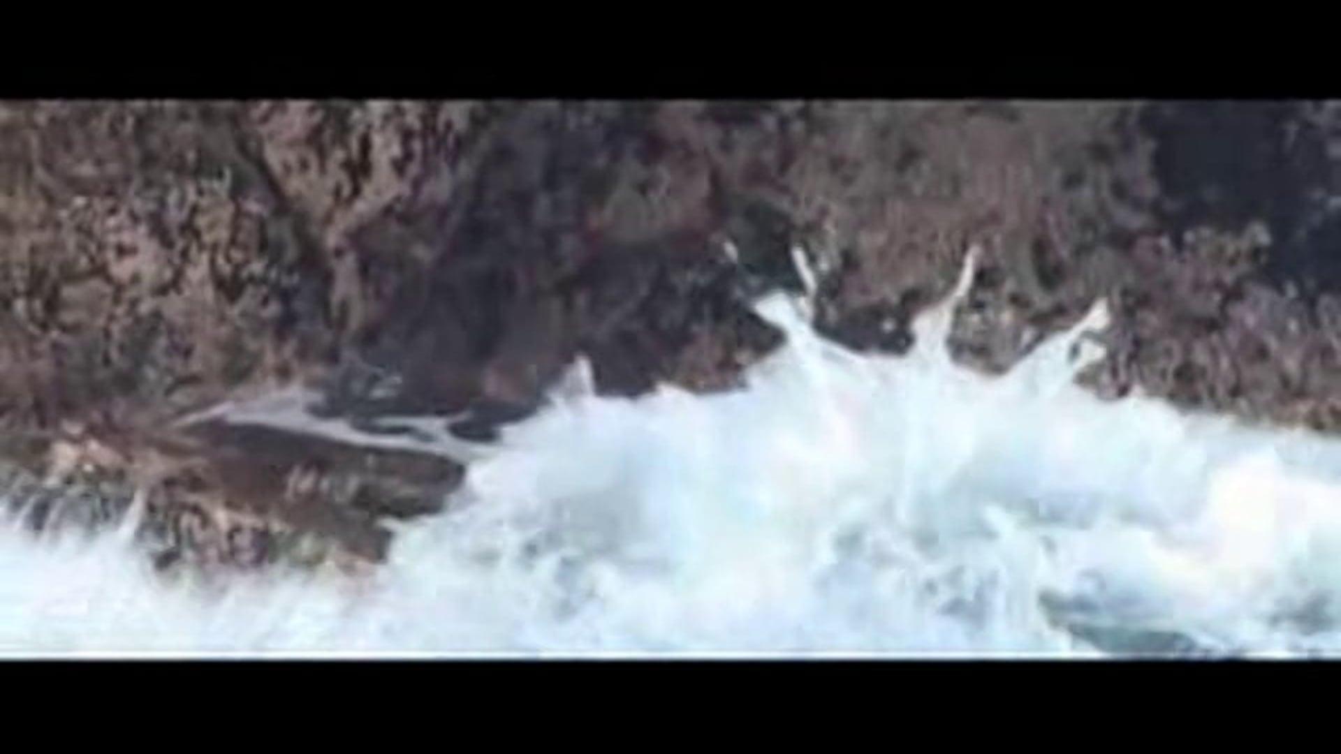 Mackenzie State Park - Love | Earth | Sea