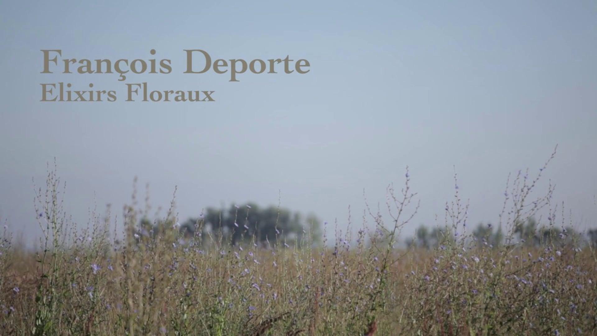 François Deporte {Elixirs Floraux}