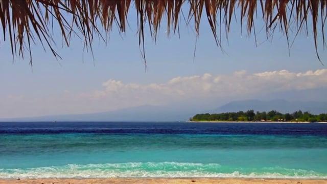 Caribbean Sea Shoreline - Antigua