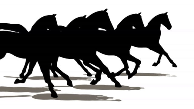 Galloping Horses (Silhouettes)