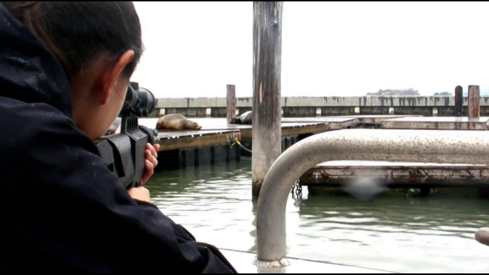 Pier 39 Rescue Attempt
