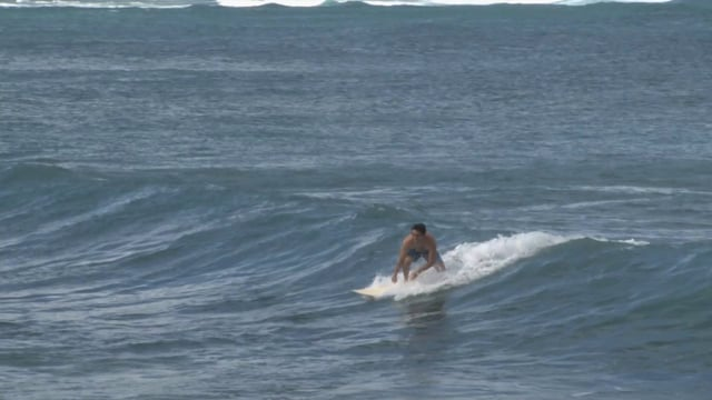 Surfer Surfing in Hawaii