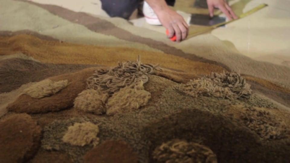 Pastizales en el Museo de los Niños del Abasto