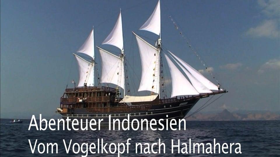 Abenteuer Indonesien - Vom Vogelkopf nach Halmahera