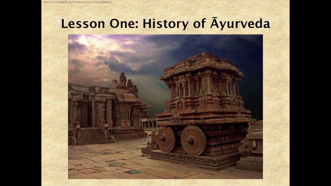 1.0 Inside Ayurveda