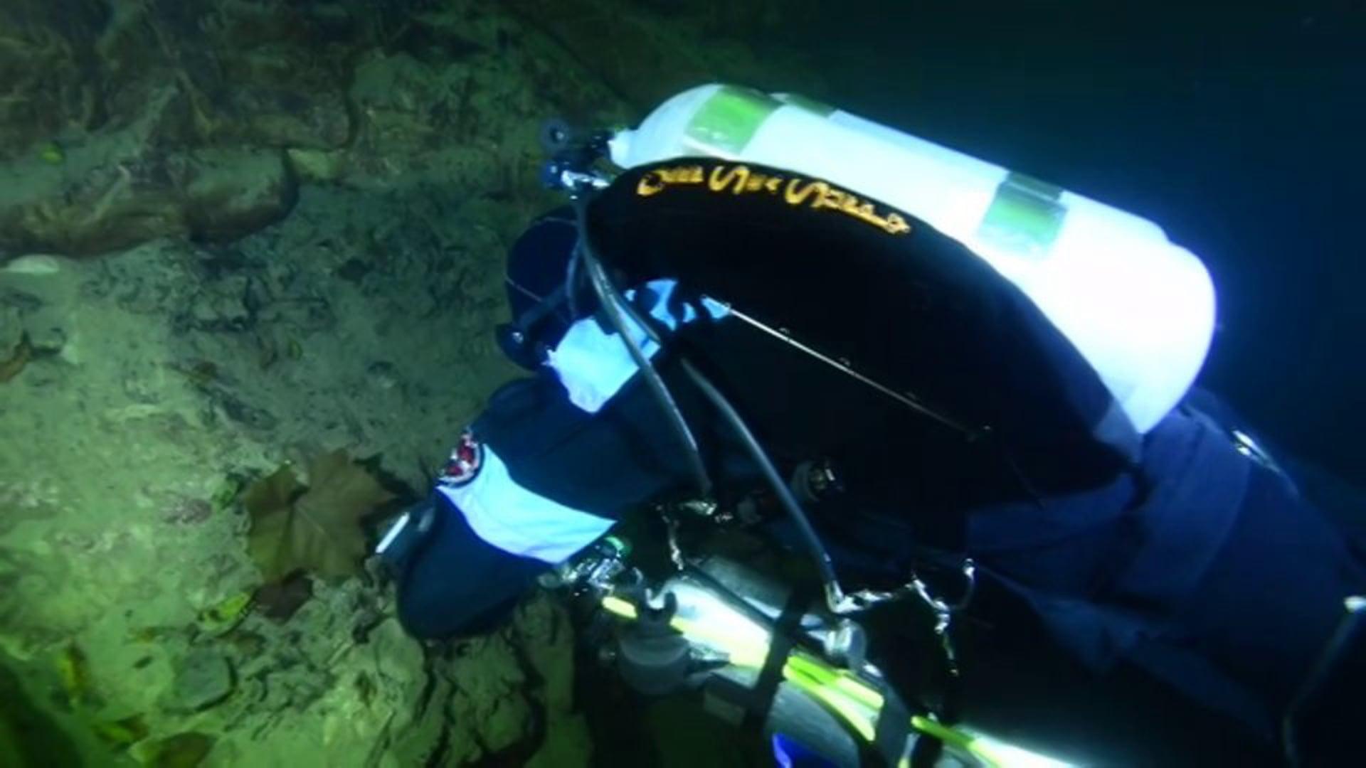 Diving at Mermet Springs