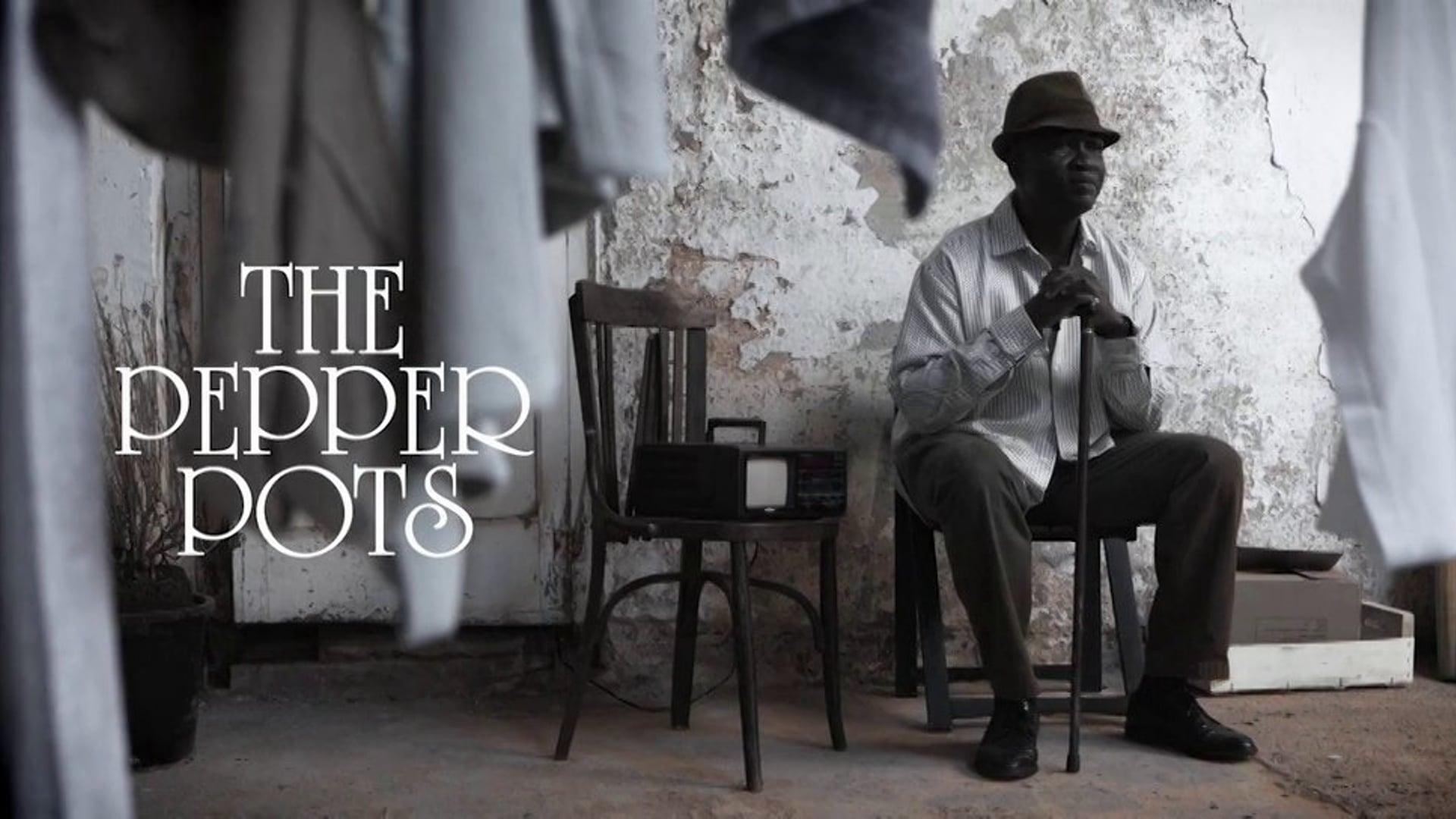 THE PEPPER POTS videoclip