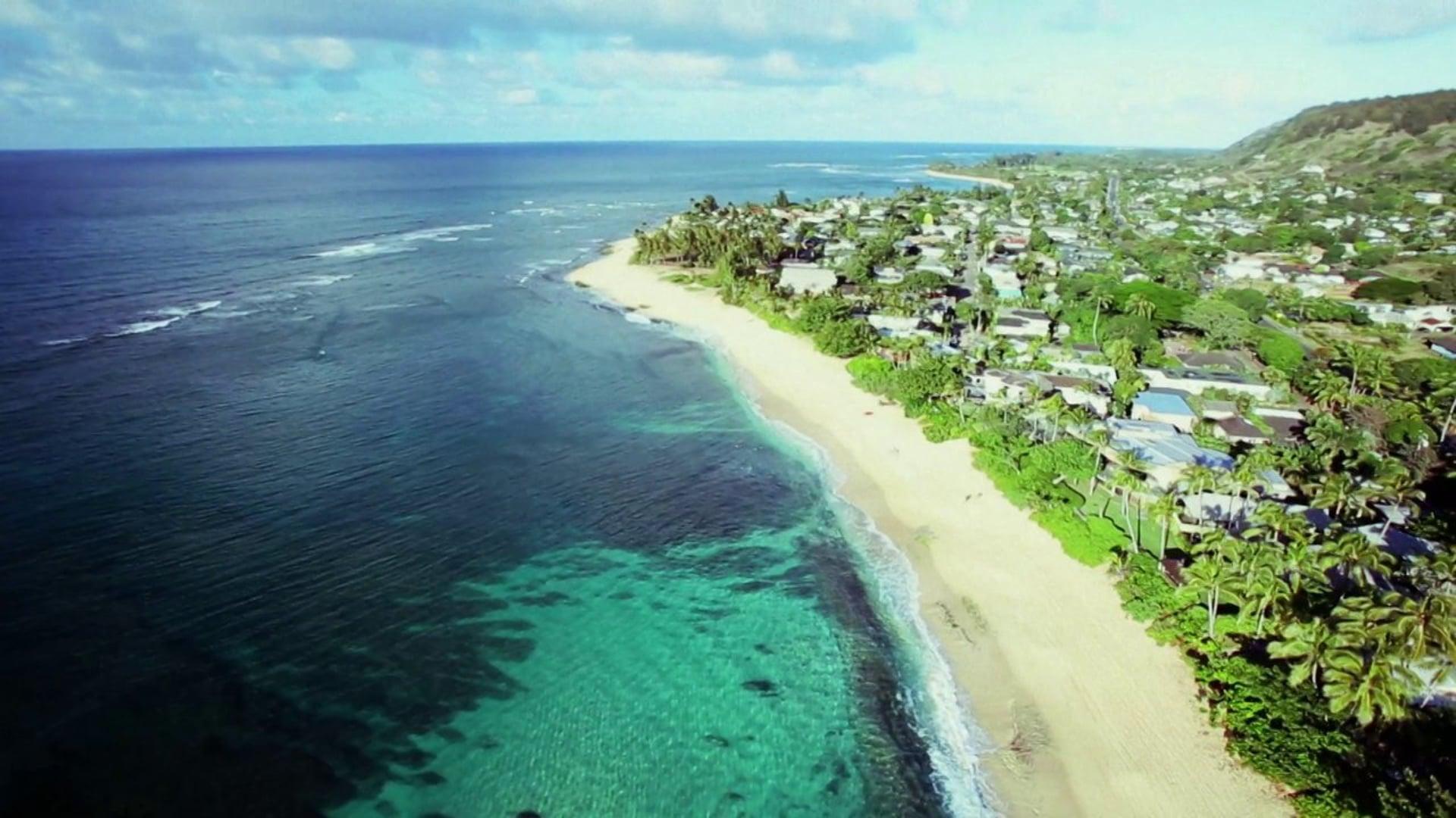2013 Vans US Open of Surfing || North Shore Epicenter