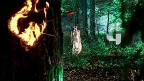Fairy Bumpers II: Burning Heart