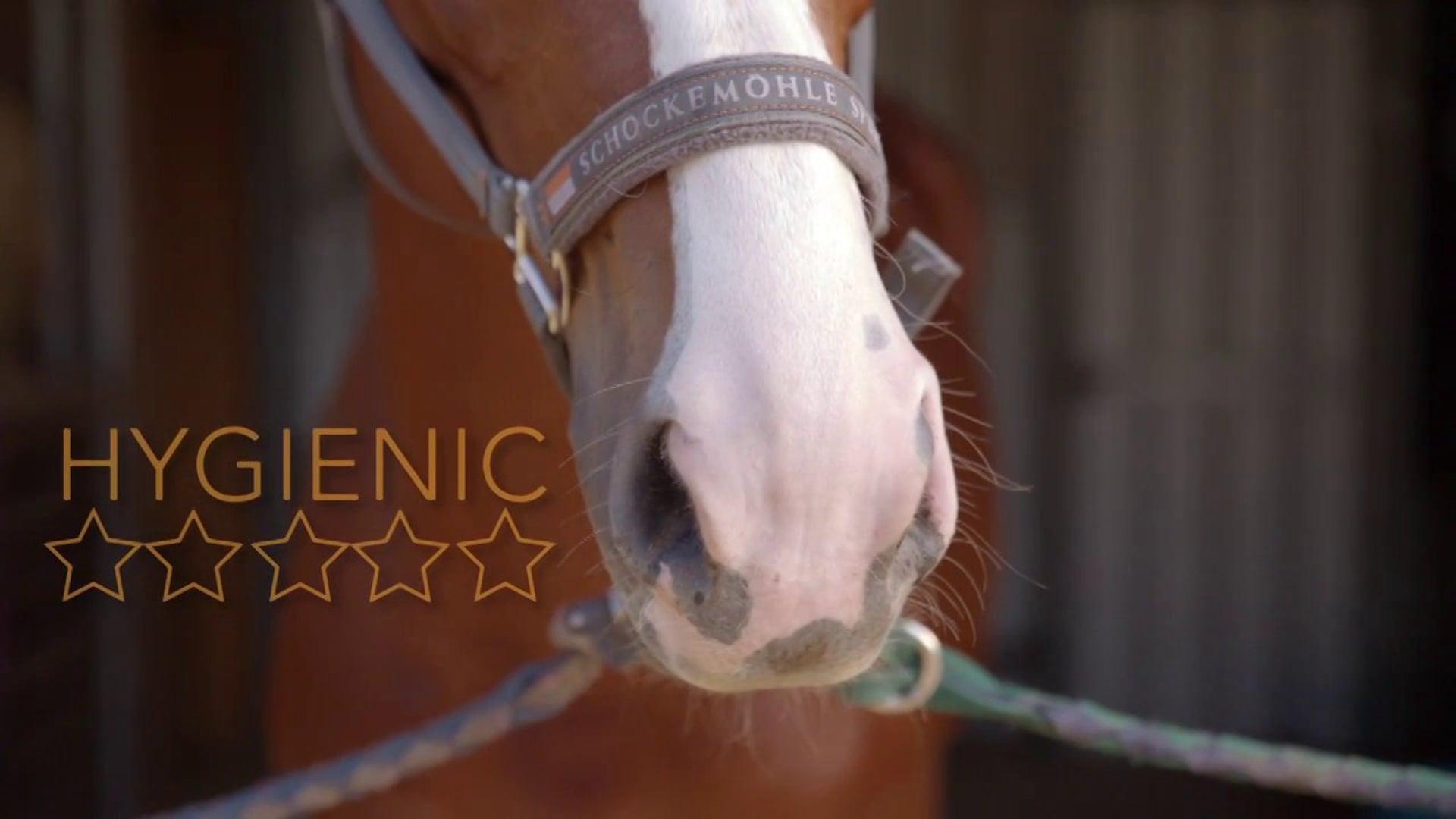 Proteq Equine Bedding