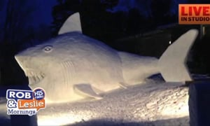 Frosty has Nothing on The Snow Shark!