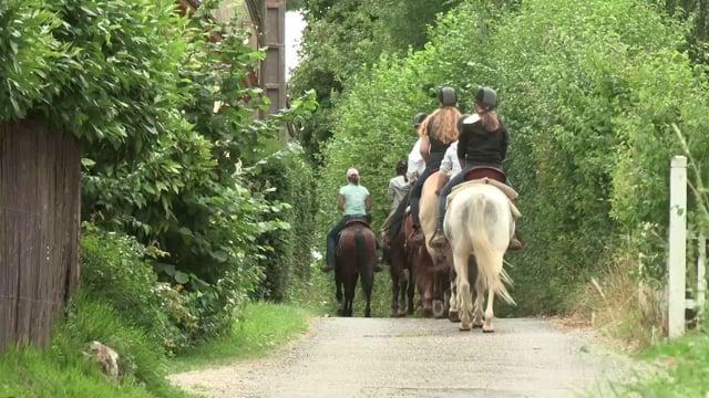Clip métier ONISEP - Monitrice d'équitation V2