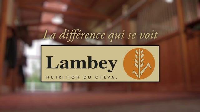 LAMBEY - Publicité 2015