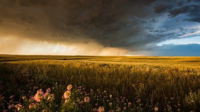Stormscapes
