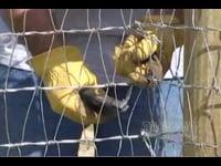 Keepsafe V-Mesh Horse Fence Installation (How To)