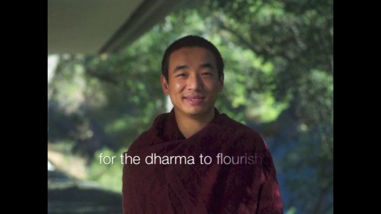 Meet Dongsung Shabdrung Rinpoche