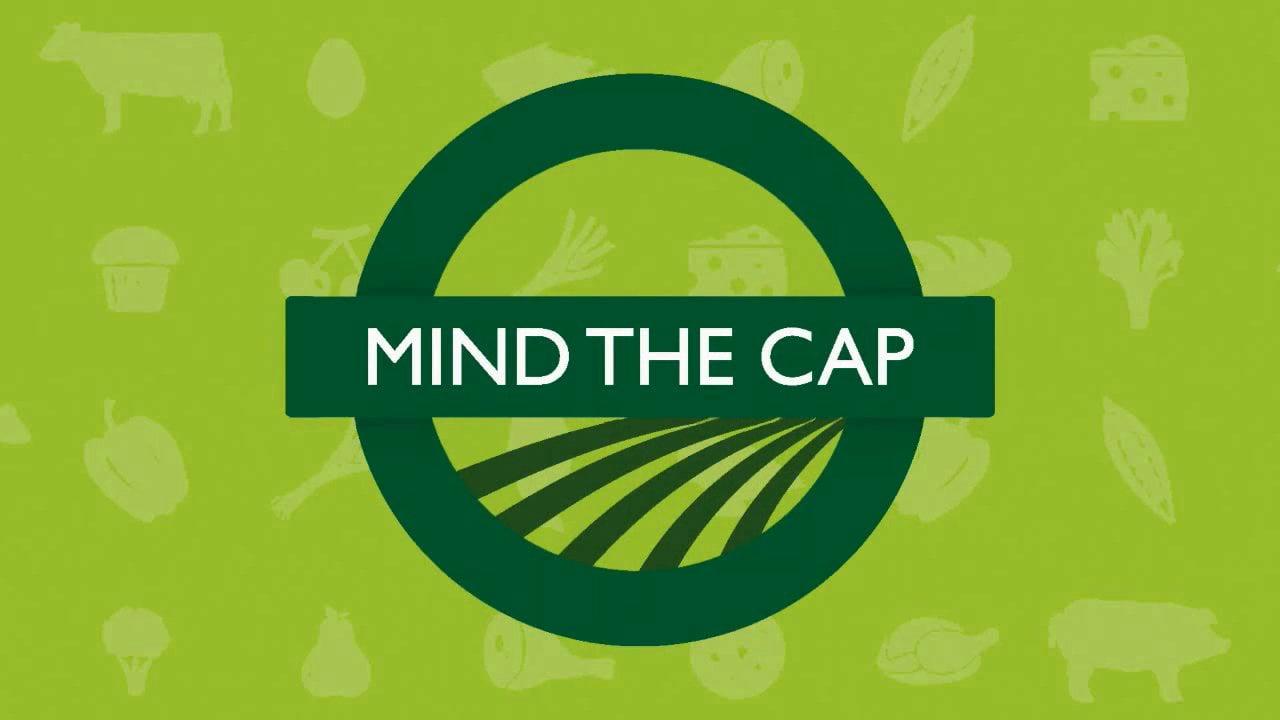 La PAC en relación con las producciones ecológicas desde el punto de vista de  los expertos