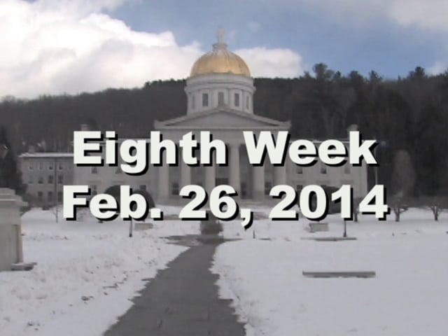 Under The Golden Dome 2014 Week 8