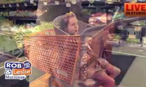 411 Special Grocery Carts and Harmful Sound Machines For Babies