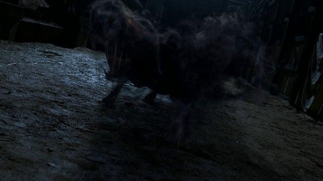 Ghost Dog | VFX