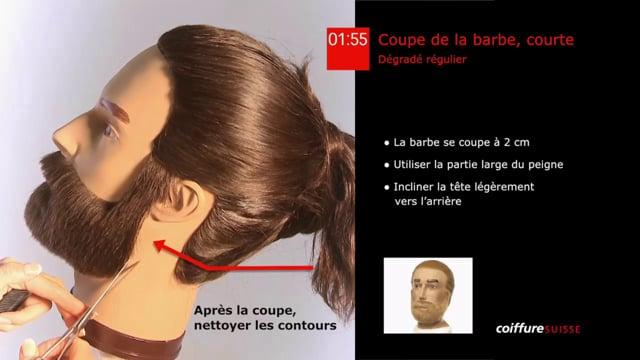 37. Coupe de la barbe (courte)