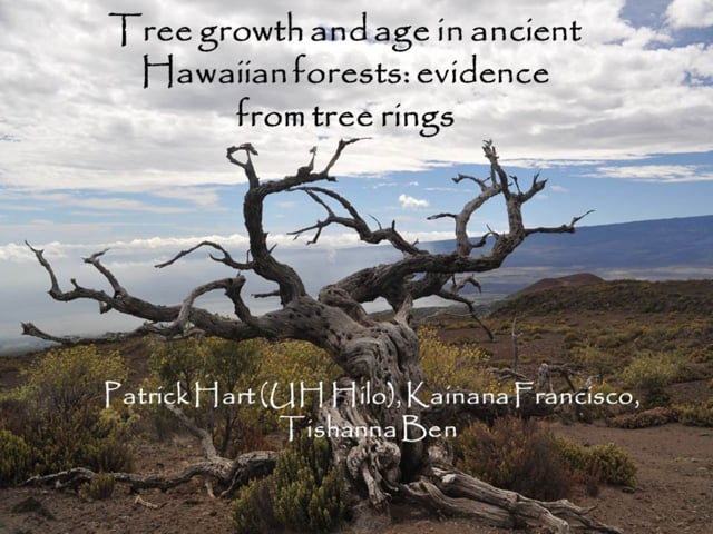 """2014_07: Pat Hart """"Tree growth and age in ancient Hawaiian forests: evidence from tree rings"""""""