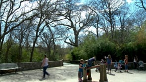 Spring Break at the Cameron Park Zoo
