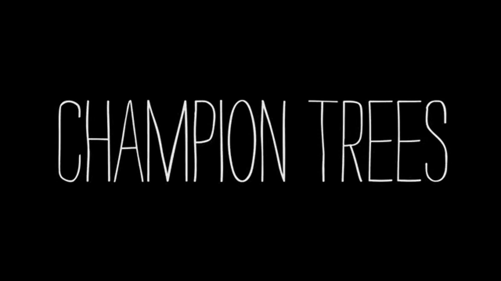 CHAMPION TREES: CLIP